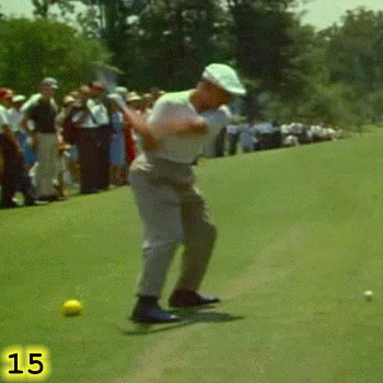 HEEL PLANT AND START OF DOWNSWING: In Frame 15, Ben Hogan's left heel is firmly planted on the ground and the linear momentum that he created is in the process of being converted into rotational momentum by the extension of his left leg. His left knee is starting to extend and to drive the rotation of his hips. His right heel is starting to be pulled off the ground by the rotation of his hips. Notice how, while Ben Hogan's left arm is straight, his right elbow is connected to his back hip and his back arm is making an L shape.  He is maintaining the hinge angle and the club is still  in the lag position.